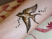 Cute sparrow is a small henna tattoo on the wrist